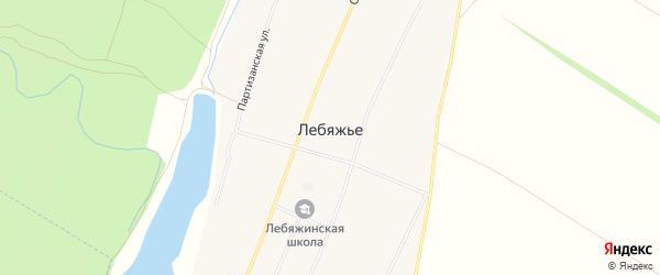 Карта села Лебяжьего в Алтайском крае с улицами и номерами домов