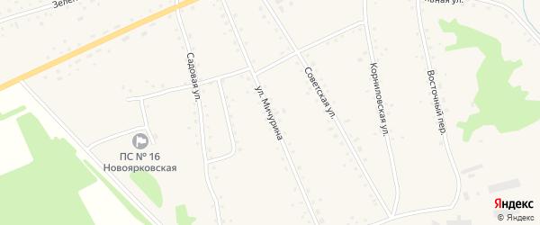 Улица Мичурина на карте села Новоярки с номерами домов