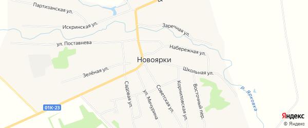 Карта села Новоярки в Алтайском крае с улицами и номерами домов