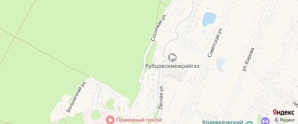 Сосновая улица на карте Новоегорьевского села с номерами домов