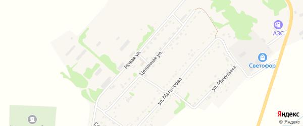 Целинная улица на карте села Завьялово с номерами домов