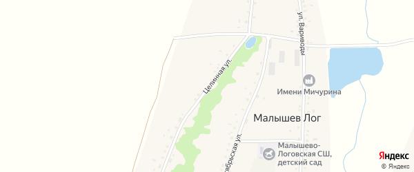 Целинная улица на карте села Малышева Лога с номерами домов