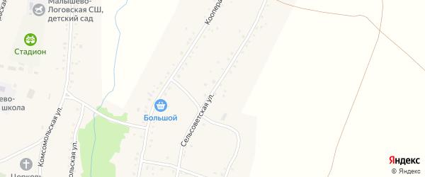 Сельсоветская улица на карте села Малышева Лога с номерами домов