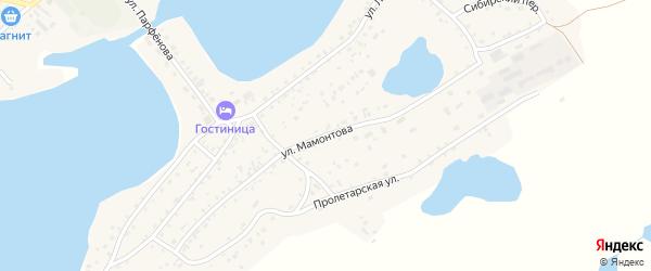 Улица Мамонтова на карте села Завьялово с номерами домов