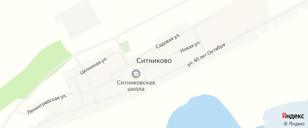Карта села Ситниково в Алтайском крае с улицами и номерами домов