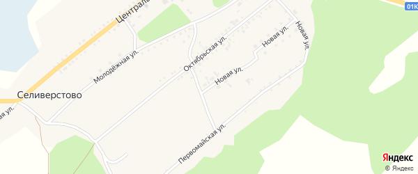 Новая улица на карте села Селиверстово с номерами домов