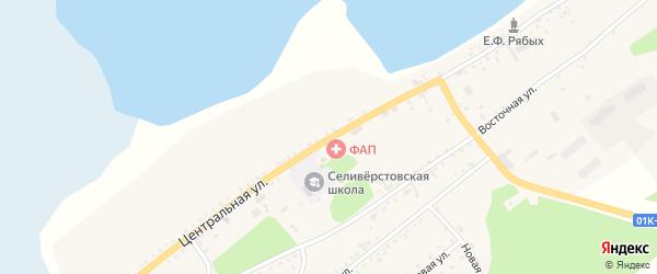 Центральная улица на карте села Селиверстово с номерами домов