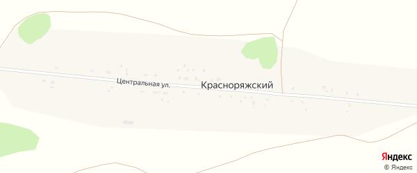 Центральная улица на карте Красноряжского поселка с номерами домов