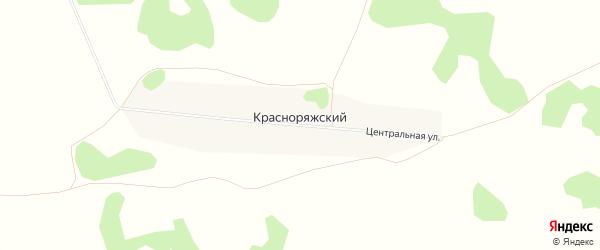 Карта Красноряжского поселка в Алтайском крае с улицами и номерами домов