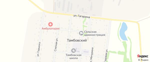 Центральная улица на карте Тамбовского поселка с номерами домов