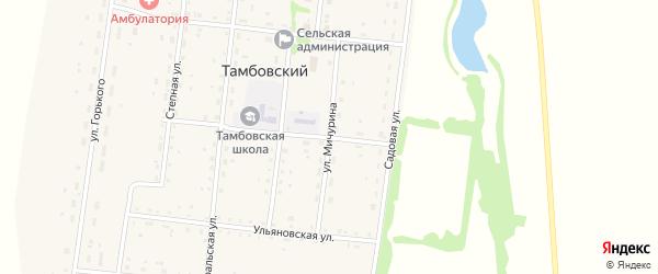 Улица Мичурина на карте Тамбовского поселка с номерами домов