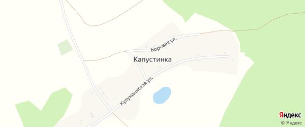 Центральная улица на карте поселка Капустинки с номерами домов