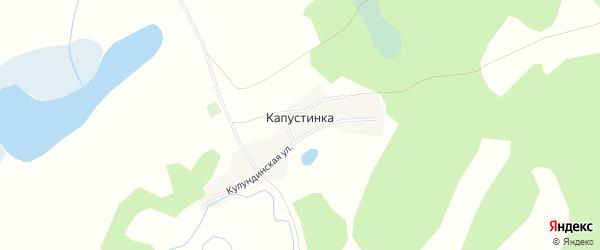 Карта поселка Капустинки в Алтайском крае с улицами и номерами домов