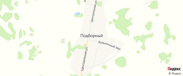 Карта Подборного поселка в Алтайском крае с улицами и номерами домов