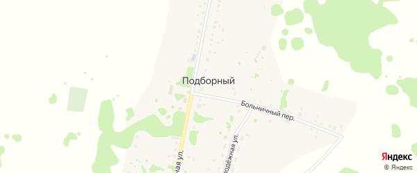Больничный переулок на карте Подборного поселка с номерами домов