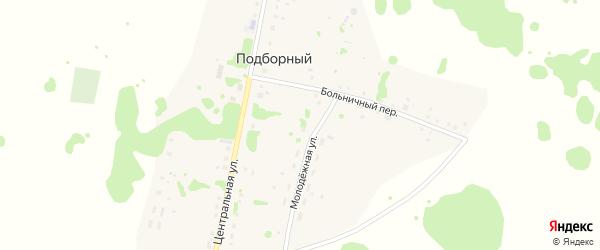 Новая улица на карте Подборного поселка с номерами домов