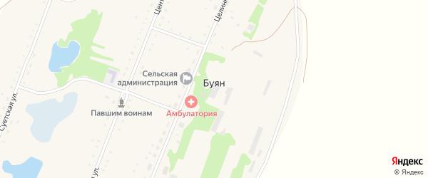 Целинная улица на карте села Буяна с номерами домов