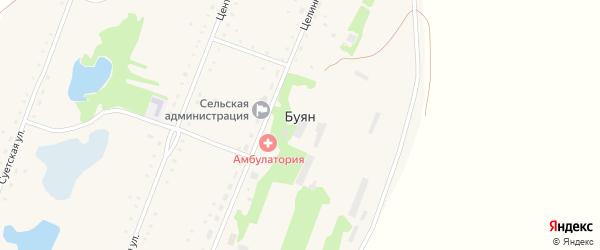 Центральная улица на карте села Буяна с номерами домов