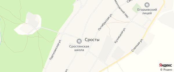 Карта села Сросты в Алтайском крае с улицами и номерами домов