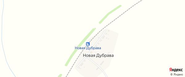 Лесная улица на карте станции Новой Дубравы с номерами домов