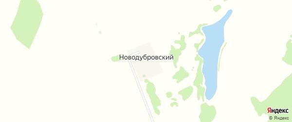 Трактовая улица на карте Новодубровского поселка с номерами домов