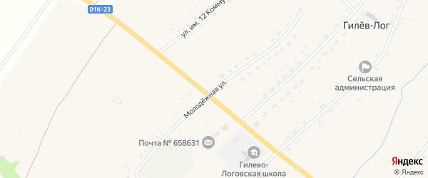 Молодёжная улица на карте села Гилев-Лог с номерами домов