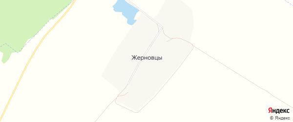 Карта поселка Жерновцов в Алтайском крае с улицами и номерами домов