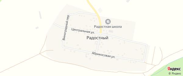 Абрикосовая улица на карте Радостного поселка с номерами домов