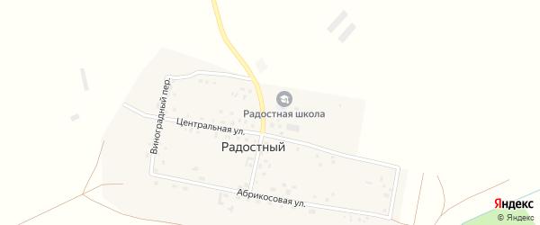 Виноградный переулок на карте Радостного поселка с номерами домов