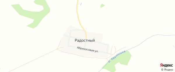 Карта Радостного поселка в Алтайском крае с улицами и номерами домов