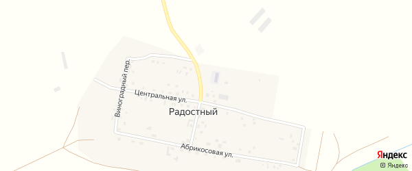 Центральная улица на карте Радостного поселка с номерами домов