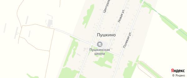 Центральная улица на карте поселка Пушкино с номерами домов