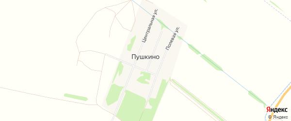 Карта поселка Пушкино в Алтайском крае с улицами и номерами домов