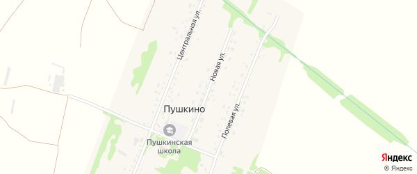 Новая улица на карте поселка Пушкино с номерами домов
