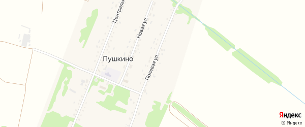 Полевая улица на карте поселка Пушкино с номерами домов