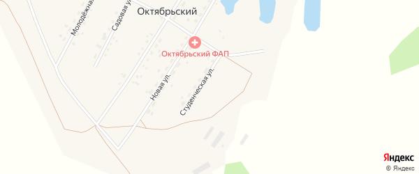 Студенческая улица на карте Октябрьского поселка с номерами домов