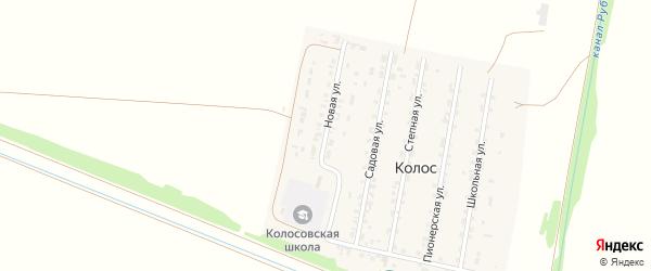 Новая улица на карте поселка Колоса с номерами домов