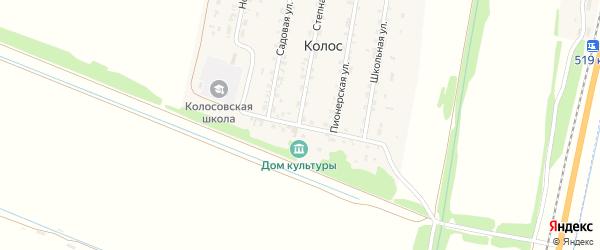 Топольная улица на карте поселка Колоса с номерами домов
