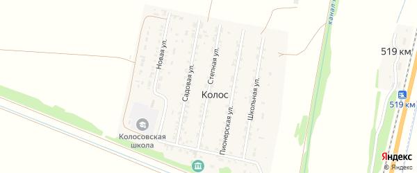 Степная улица на карте поселка Колоса с номерами домов