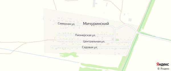 Пионерская улица на карте Мичуринского поселка с номерами домов