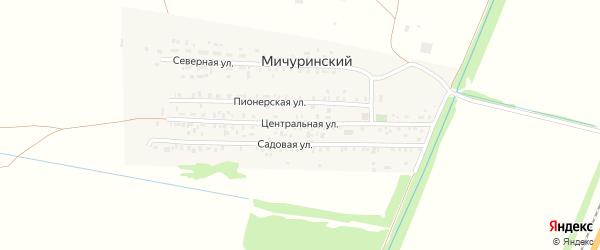 Центральная улица на карте Мичуринского поселка с номерами домов