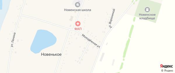 Молодежная улица на карте Новенького села с номерами домов