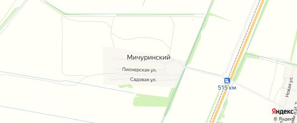 Карта Мичуринского поселка в Алтайском крае с улицами и номерами домов