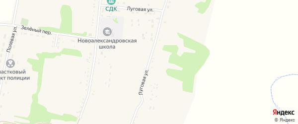 Луговая улица на карте села Новоалександровки с номерами домов