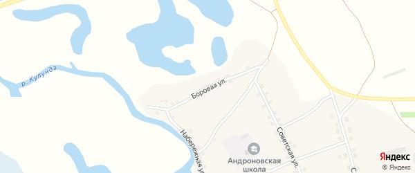 Боровая улица на карте села Андроново с номерами домов