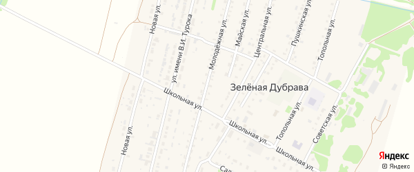Молодежная улица на карте поселка Зеленой Дубравы с номерами домов