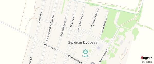 Центральная улица на карте поселка Зеленой Дубравы с номерами домов