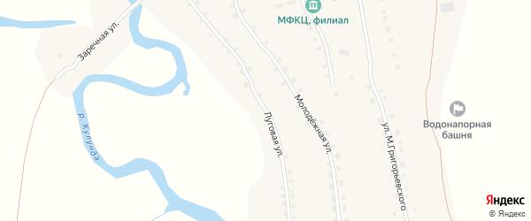 Луговая улица на карте села Андроново с номерами домов
