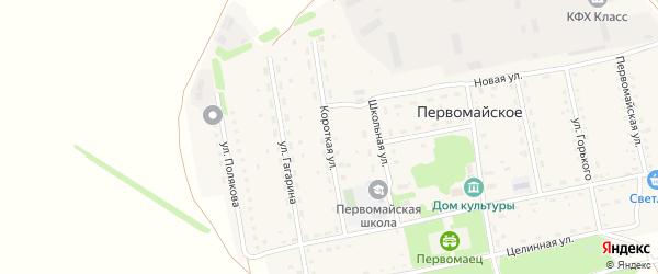 Короткая улица на карте Первомайского села с номерами домов