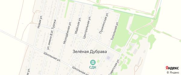 Пушкинская улица на карте поселка Зеленой Дубравы с номерами домов